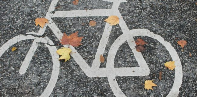 bicycle-path-491313_1920-845x321